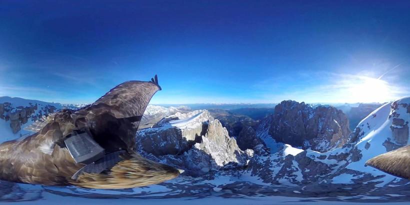 360° EAGLE CAMERA